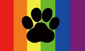 Gay Furry Hangout