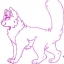 Ruby_Rarity_the_cat