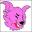 Katie the Huskyroo fox